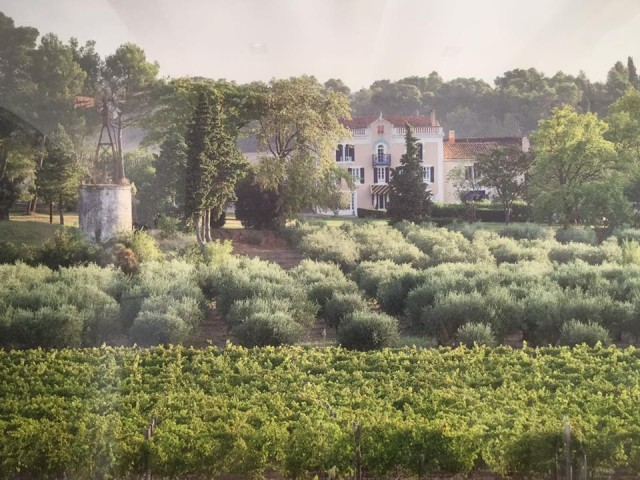 Winery DMC Carcassonne Wine Tasting DMC Carcassonne A la Carte Events
